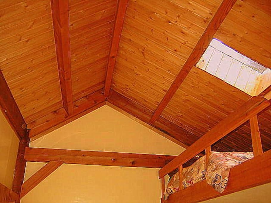 Loft bed with skylight