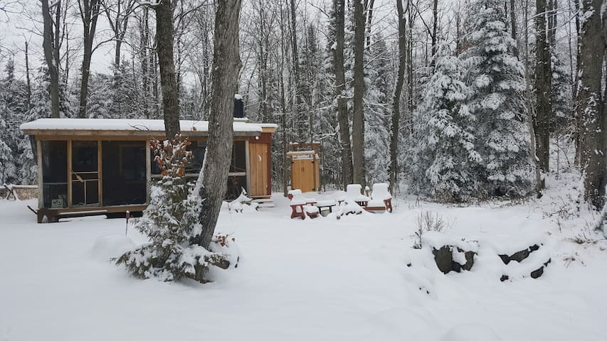 Tiny Cabin in the Forest - Bobcaygeon - Cabaña