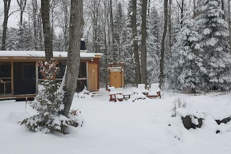 Tiny Cabin in the Forest - Bobcaygeon