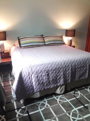 King Bed Near DT/Zoo/Breweries! - Grand Rapids - Ev