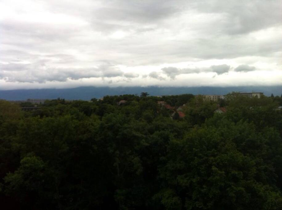 The view (on a cloudy day)