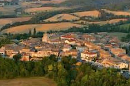 village médiéval  - Castelnau-de-Montmiral