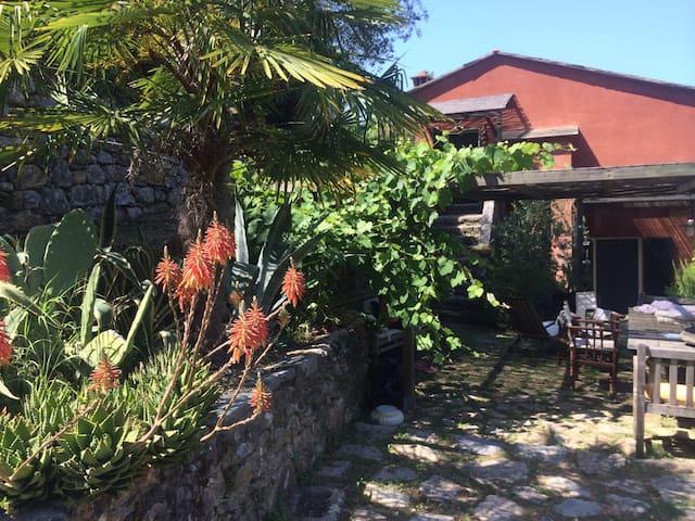 Your villa on Palmaria's island! - Portovenere - วิลล่า