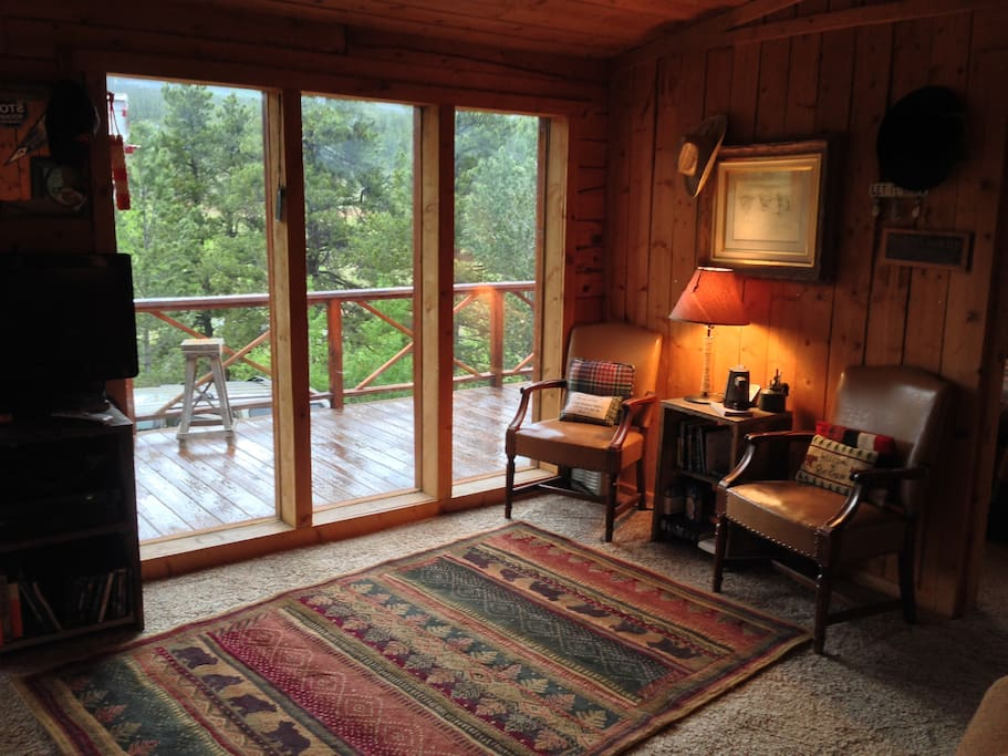 View from living room out front of cabin.
