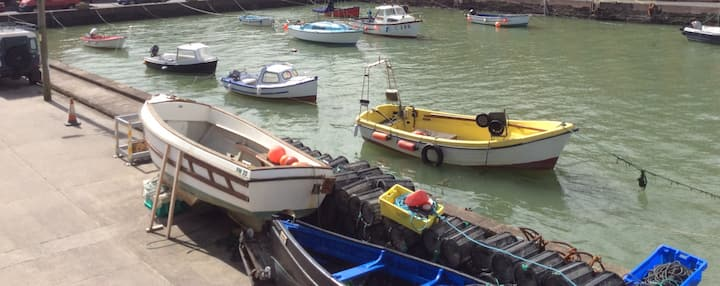 Waterfront Harvey's- Seagull & Sea