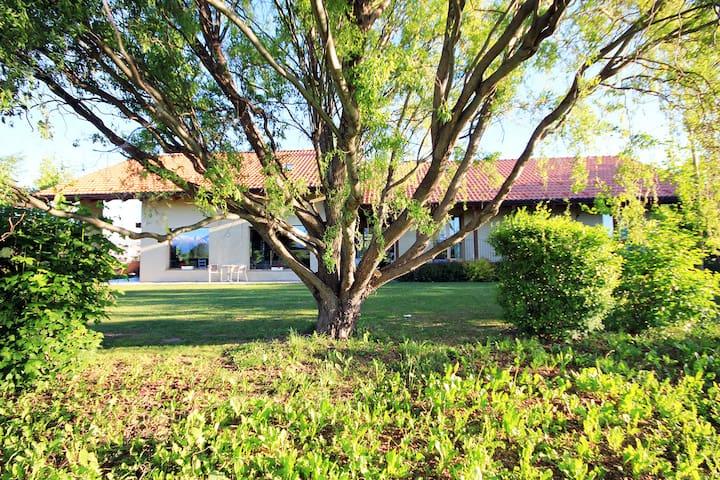 curata e unica casa di campagna - Cuneo - House