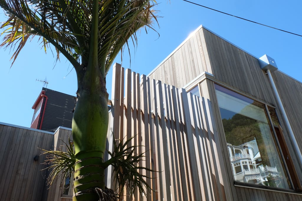 Side view of studio from Hay Street. Private deck with table and chairs to sit in the sun with view of Oriental Bay harbour.