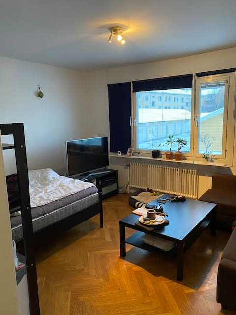 Nice apartment, just 5 min walking to the city
