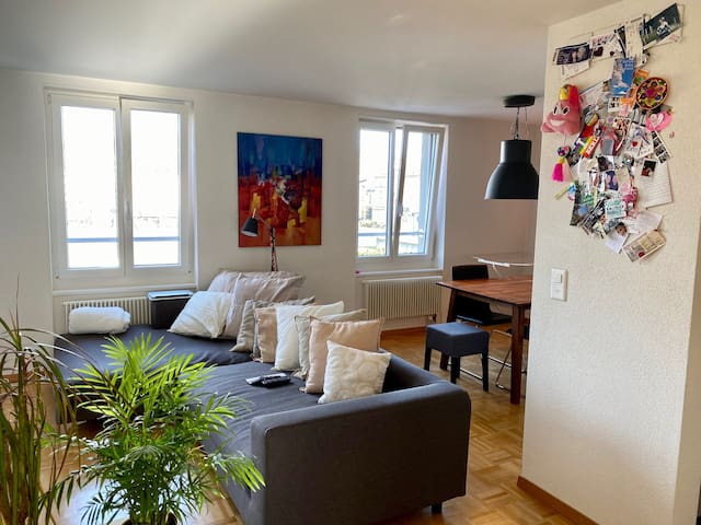 Quiet and bright downtown Apartment