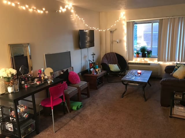 Elegant Large Studio in Downtown - State College - Apartment