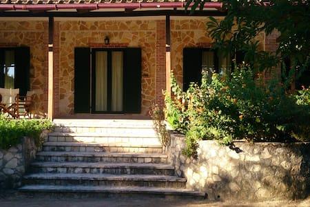Giovanna Studios - Ζάκυνθος - Apartamento