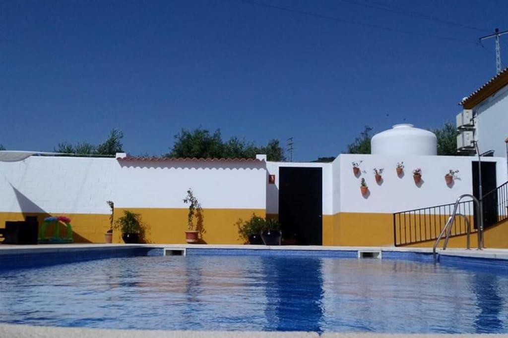 H tel andalou montellano chambres d 39 h tes louer montellano andalousie espagne - Chambres d hotes seville ...