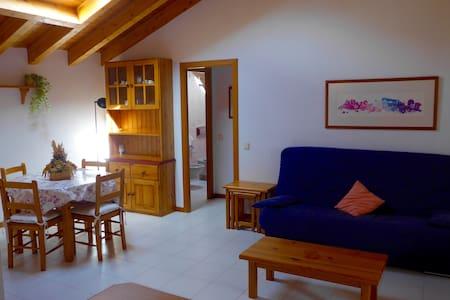 Apartamento para 4 en el centro de Ordino! - Ordino - Appartement