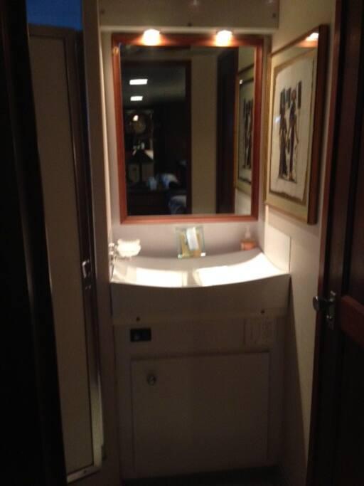 Starboard Bathroom Sink
