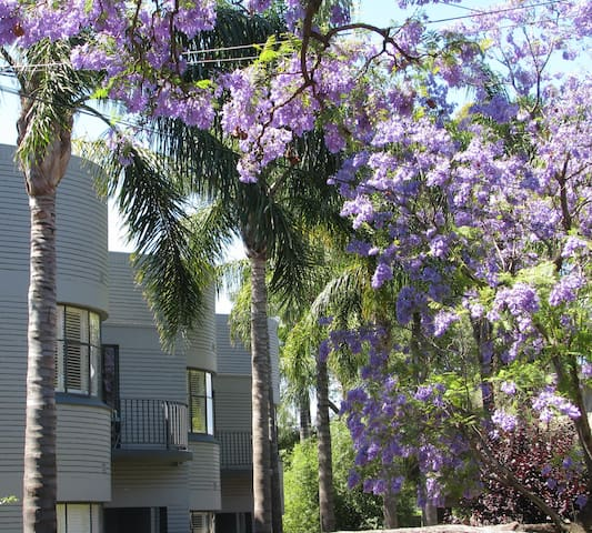 Festival Stays Millswood Apartment - Millswood - Apartament