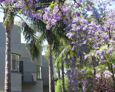 Festival Stays Millswood Apartment - Millswood - Wohnung