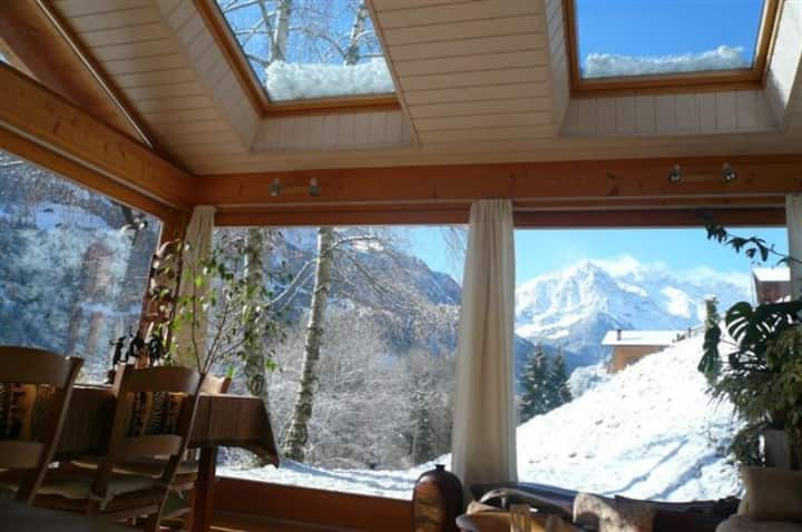 Charming chalet apartment with stunning views