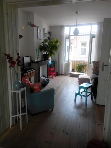 sfeervolle ruime bovenwoning 2slpk - Haga - Apartament