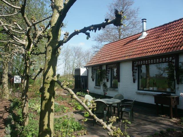 Landelijk woning mooi gelegen  - Dedemsvaart - Oda + Kahvaltı