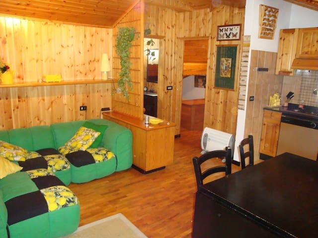 Cozy wooden appartment in Gressoney - Gressoney-Saint-Jean - Apartment