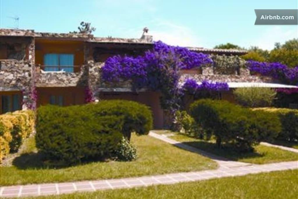 L'ingresso di casa è quello al di sotto della bouganville viola