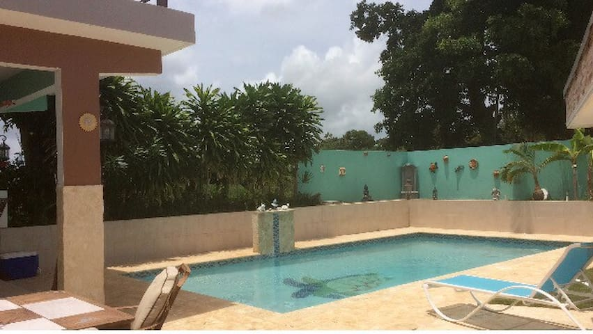 Studio Villa with private pool - Camuy - วิลล่า