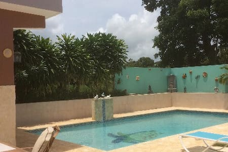 Private Studio Villa with pool - Camuy - Villa