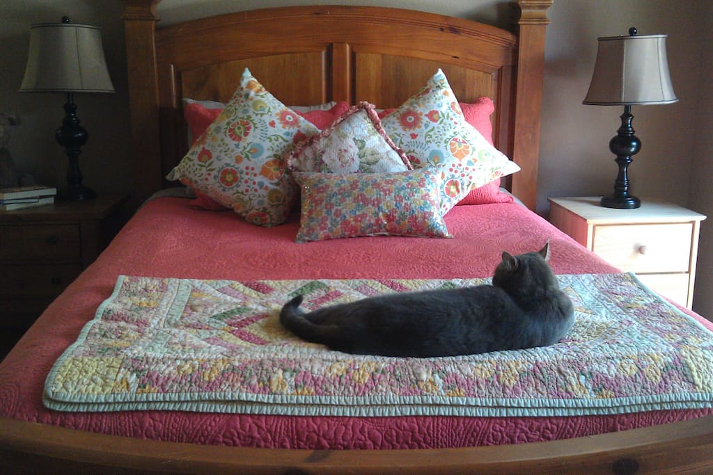 Lucile Suite -- Master Bedroom - Kitty not included!  Room for inflatable twin bed for children ($25 extra each person over 2)