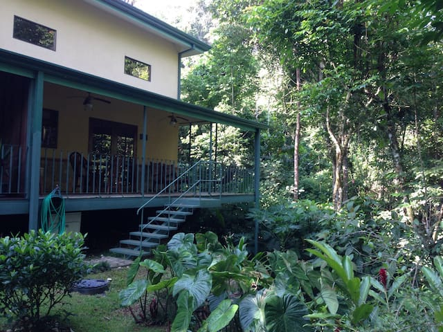 Luxury Rainforest Villa, Disc Tours - Ojochal - Villa
