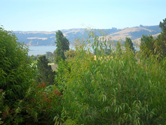A Room with a View - Benicia - House
