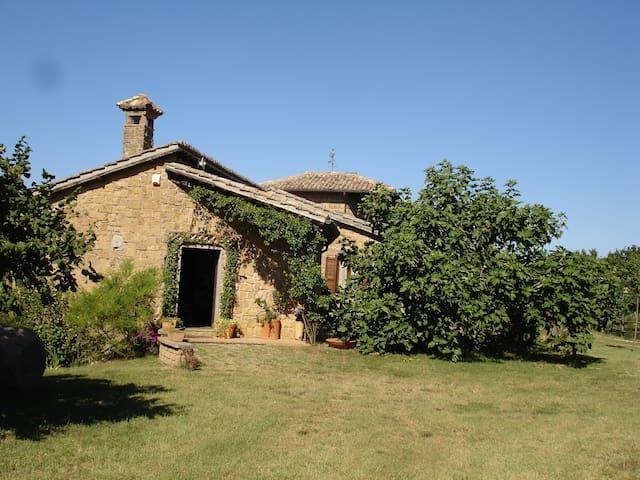 Casa nella natura (intera struttura 400 mq circa) - Capranica  - Haus