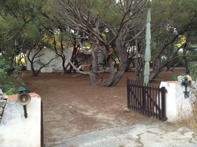 FAVIGNANA HOME - Favignana - Villa