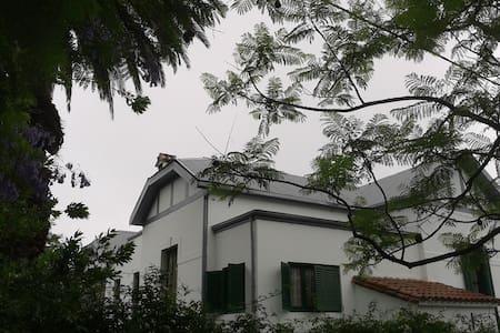 casa de artista - Alta Gracia - Talo
