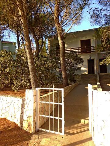 Apartments Peranić / Two bedroom A1 DONJI - Stara Novalja