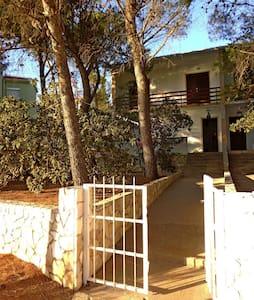 Apartments Peranić / Two bedroom A1 DONJI - Stara Novalja - Appartement