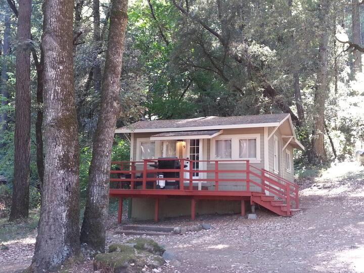 China Creek Cottage #9