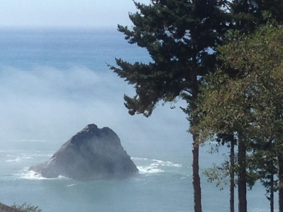 Mesmerizing view of fog blowing across the seastack, the North Coast is full of rugged beauty!