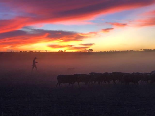 Lindum Farm Stay