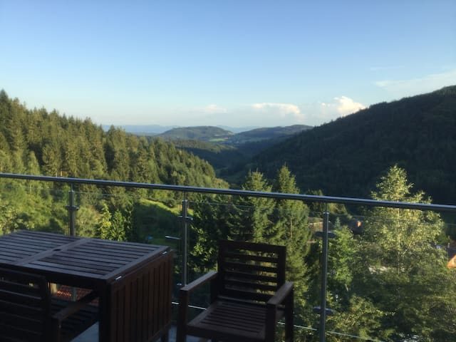 The best view of Black Forest (Schwarzwald)