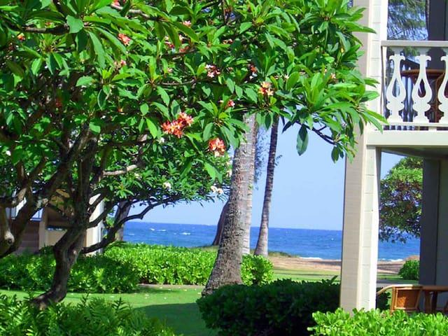 Ocean/Garden View 170