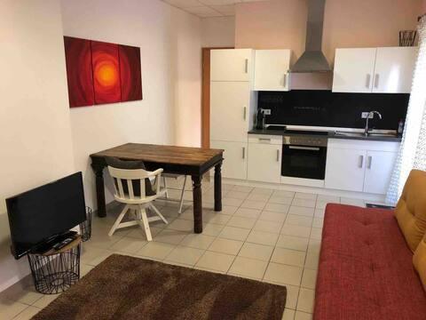 Appartement 1 pièce avec cuisine, salle de bain, terrasse
