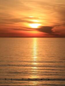 Romantic Oceanfront Hideaway - エンシニタス - 別荘