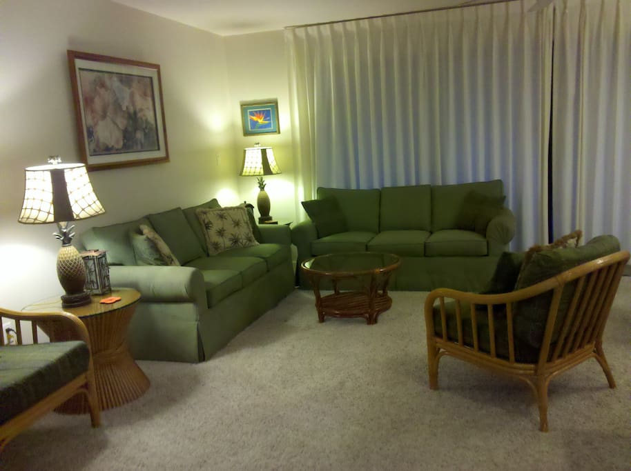 Spacious living room with sofa sleeper (double) for 2 or optional queen air mattress.