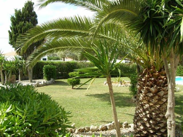 En el Jardín los niños pueden disfrutar de la naturaleza