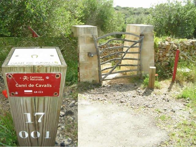 En el mismo Cami de Cavalls, Puedes hacer dos rutas desde Calan Porter