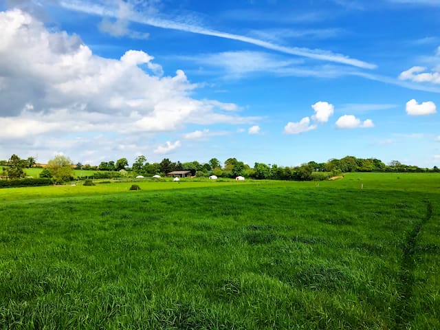 Somerset yurts, set in beautiful countryside, with acres of private land to explore