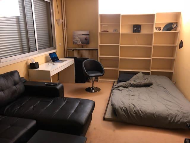 Calm and cozy flat in Paris