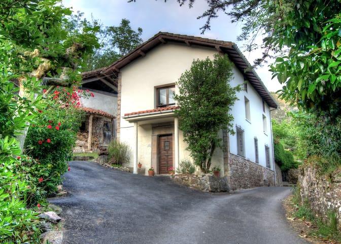 La Rondita - Arriondas, Parres - Huis