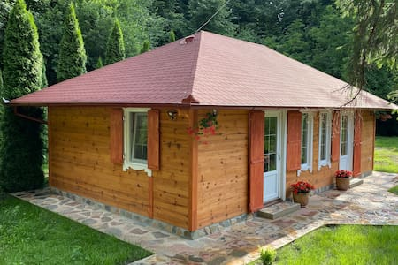 Cabin near Danube river