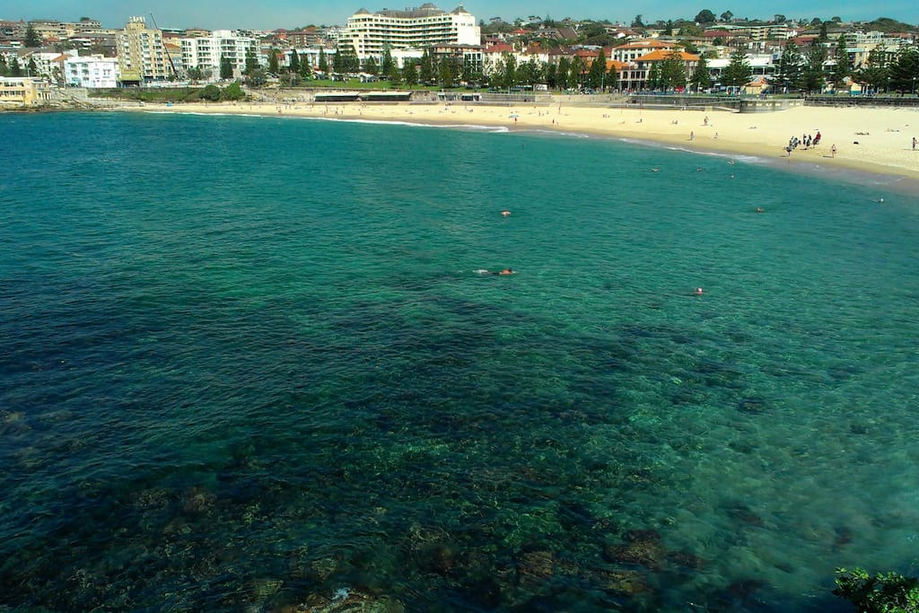 looking over Coogee Bay